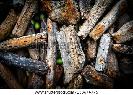 wood branches background - stock photo