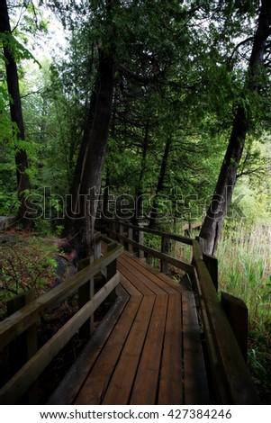 Wood Bridge Crawford Lake Milton Ontario - stock photo