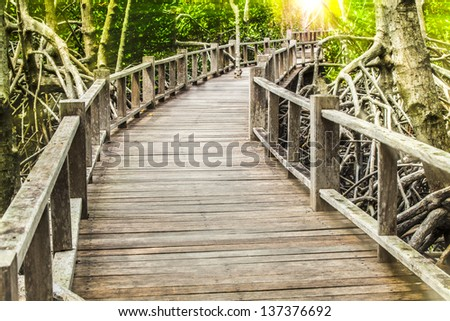 wood bridge in the forest whith sun light - stock photo