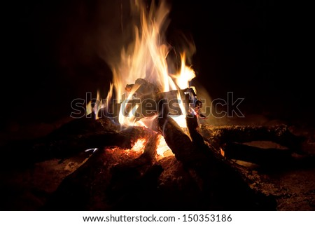Wood camp fire at night - stock photo
