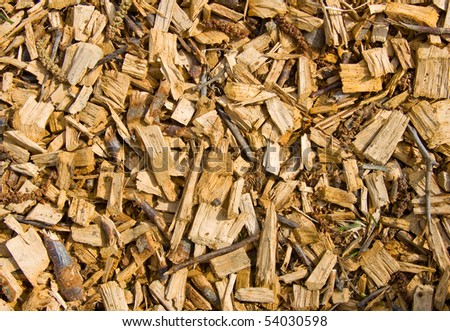 Wood chips covering the park