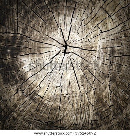 Wood cut texture background. - stock photo