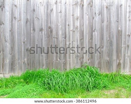 Wood fence have green grasses at bottom look like nest for egg that mean can put object on grass, Wood texture. - stock photo