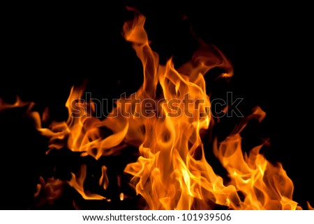 Wood fire on black background - stock photo
