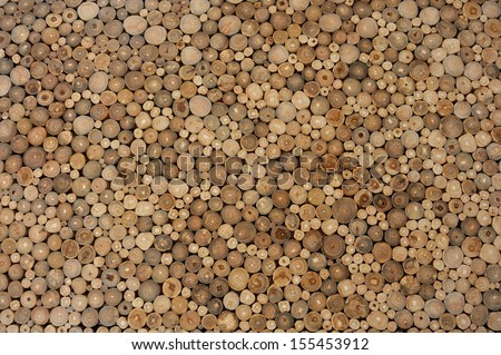 Wood For background - stock photo