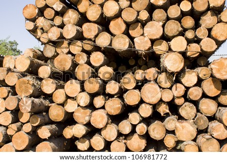 Wood fuel is eco friendly - stack of logs against bright blue sky with few clouds. - stock photo