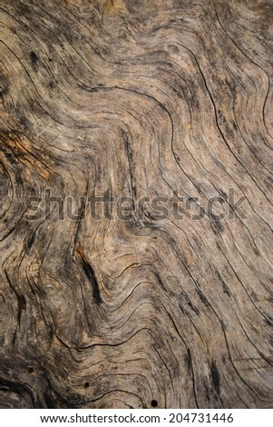 Wood Grunge Background