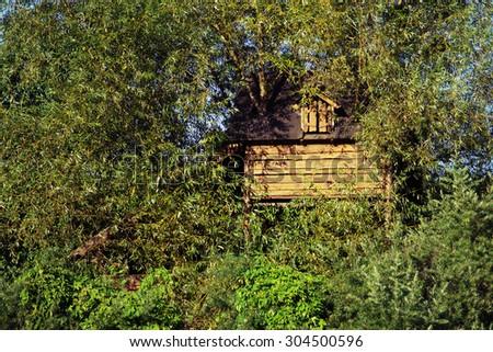 wood house on tree - stock photo