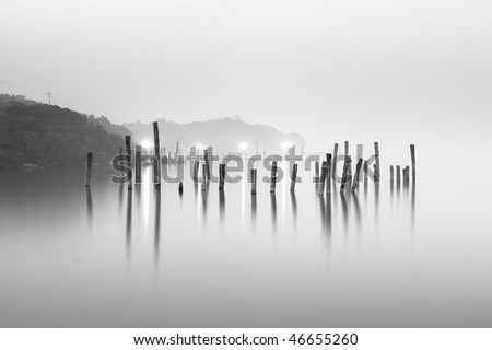 wood in water, black and white - stock photo