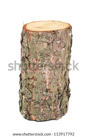 Wood log as fire wood in front of a white background - stock photo