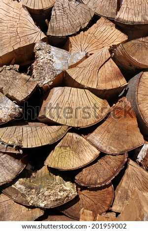 wood logs - stock photo