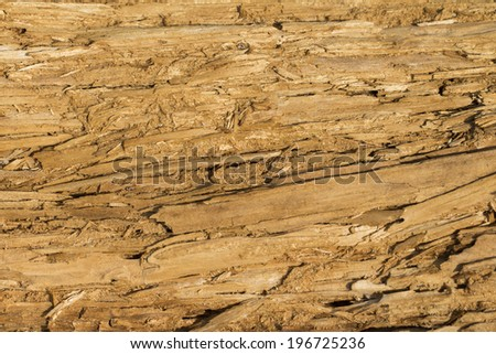 wood on the white background - stock photo