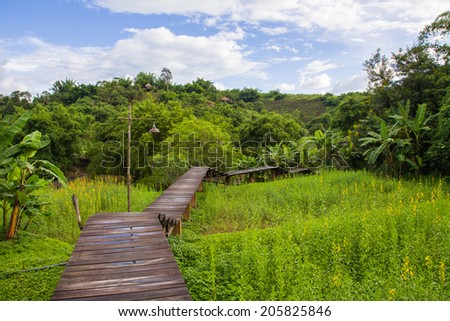 Wood path along rice field and through the mountain - stock photo