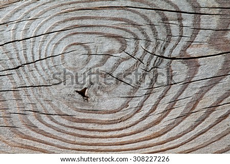 Wood pattern. Wooden texture with knots. Macro view. aged table surface. - stock photo