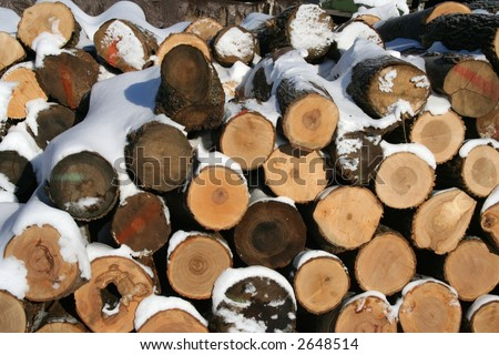 wood pile in winter - stock photo