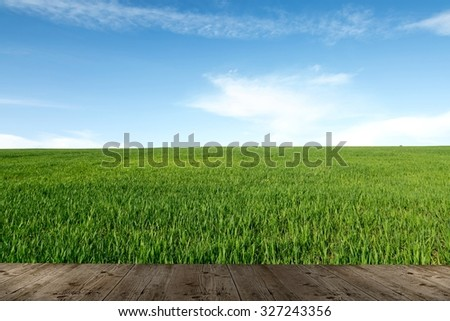 Wood plank on natural green grass field & sky background  - stock photo