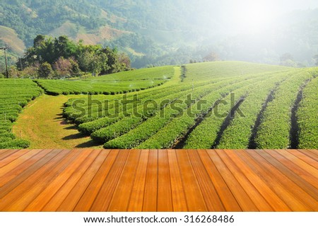 wood plank on tea plantation with sunlight in northern Thailand  - stock photo
