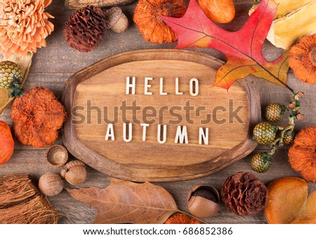 Wood plaque with hello autumn text surrounded with colorful fall objects