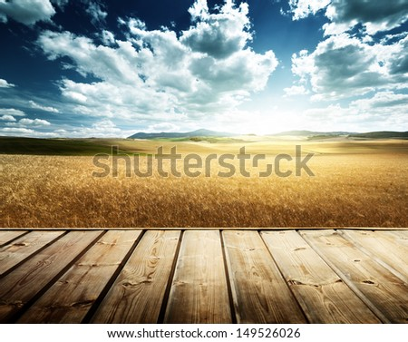wood platform and barley  hills Tuscany, Italy - stock photo