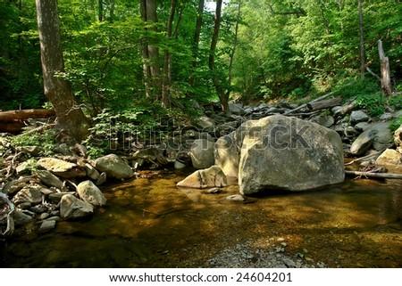 Wood river in Shenandoah National park - stock photo
