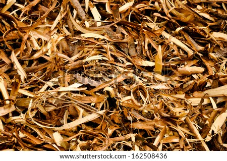 Wood shavings structure created design background - stock photo