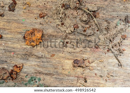 wood texture background. dirty old board - after exposure to rain, snow and dirt adhering