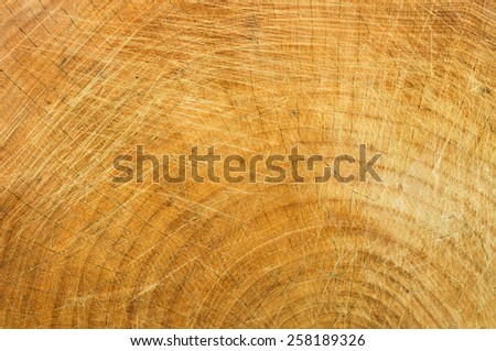 wood texture - brown grunge lines plank blank gray background - stock photo