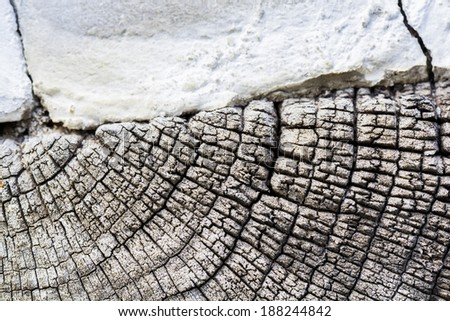 Wood texture from very old, weathered piece on wood from a construction and fragment of concrete wall - stock photo