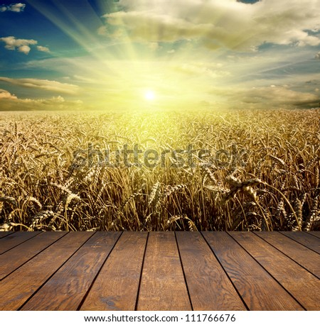 wood textured backgrounds in a room interior on the field and meadow backgrounds - stock photo