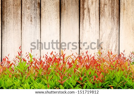 wood wall and grass - stock photo