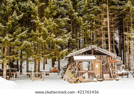 Wood workers cabin in the forest of needle-leaved trees. The green of the trees stand out on the material and wood around the cabin, all is snow covered. - stock photo