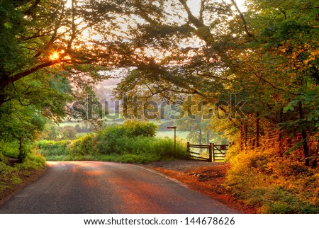 Wooded English country lane at sunset - stock photo