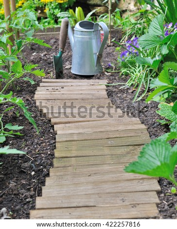 wooden alley in a vegetable garden along tomato plants