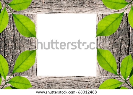 Wooden and Green leaf Frame