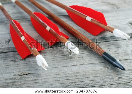 Wooden archery arrows with plastic nocks , steel points and natural feathers closeup - stock photo