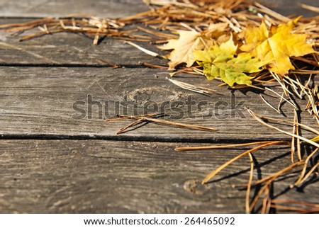 Wooden autumn background with fir needles and yellow leaves - stock photo
