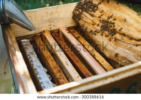 Wooden beehive with different wooden frames of honeycomb and bees inside, on sunny day, close up - stock photo