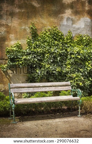 Wooden bench in front of a weathered wall with ivy - stock photo