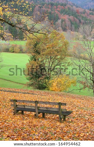 wooden bench in idyllic autumnal landscape, bavaria