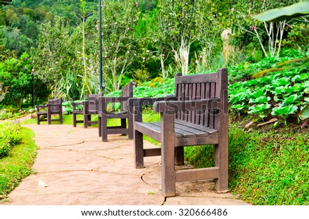 Wooden bench on the green grass in the park