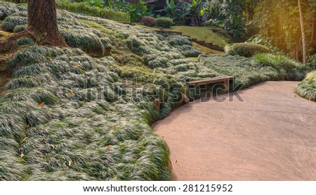 wooden bench with grass in the parkwooden bench with grass in the park. - stock photo