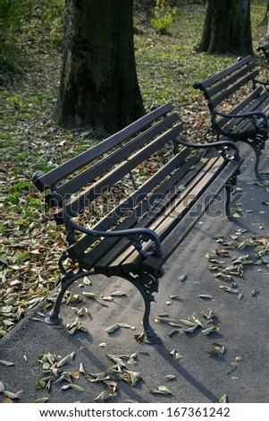 Wooden benches in park with fall leaves and trees behind - stock photo