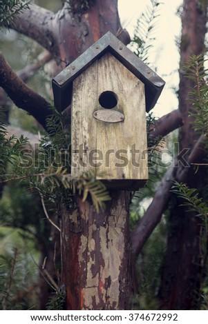 wooden birdhouse on a tree - stock photo
