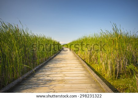 Wooden board walk on Pelee point conservation area, Ontario, Canada - stock photo
