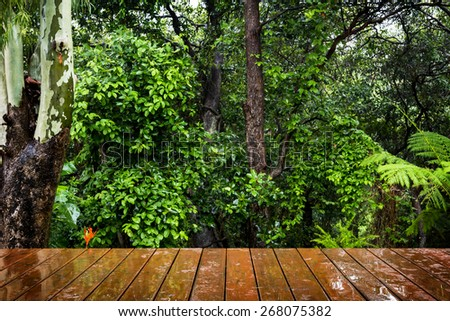 Wooden boards stretch out in perspective to the lush green forest behind. Focus is on the boards.