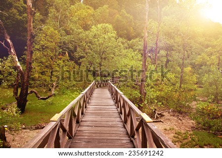 Wooden boardwalk in a tropical swampland heading into a forest of Sarawak - stock photo