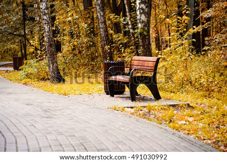 Wooden brawn bench in park near the alley in falling season in calm weather