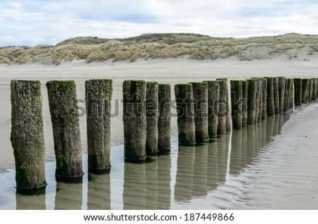 Wooden breakwaters on the beach in Nieuw Haamstede Zeeland Holland - stock photo