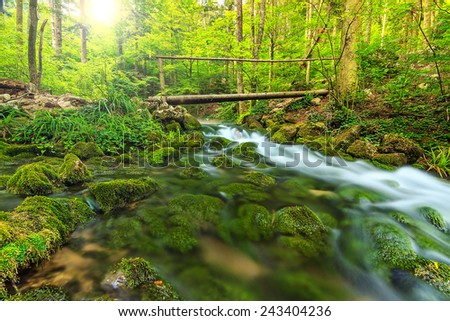 Wooden bridge and mountain river in the deep forest,Transylvania,Romania,Europe - stock photo
