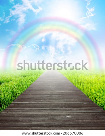 Wooden bridge in summer landscape with rainbow and blue sky, Eco background concept. - stock photo